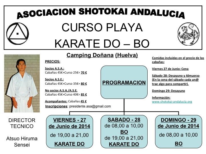 Curso Playa 2014