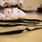 citurones negros karate do shotokai